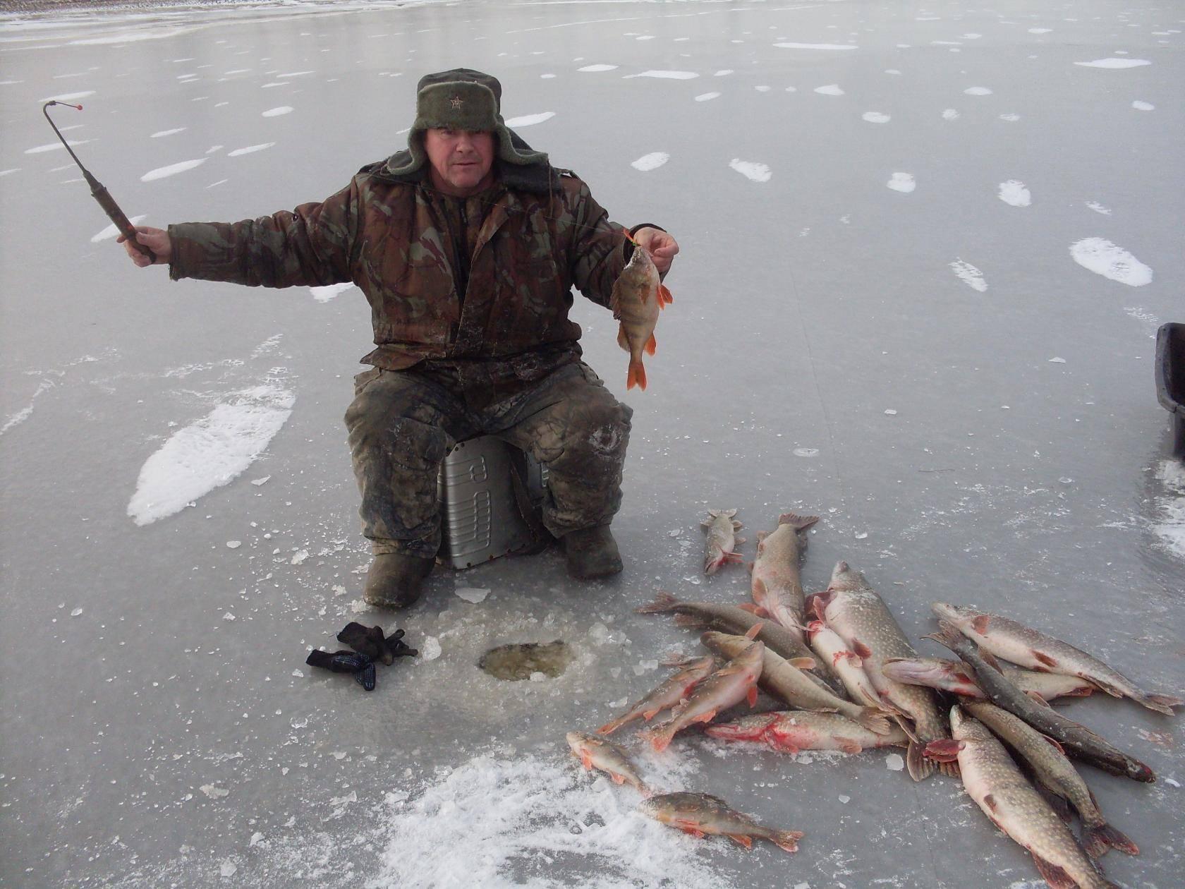 Рыбалке в екатиренбурге и окрестностях: куда можно съездить порыбачить, ловля на калиновке, чусовском озере