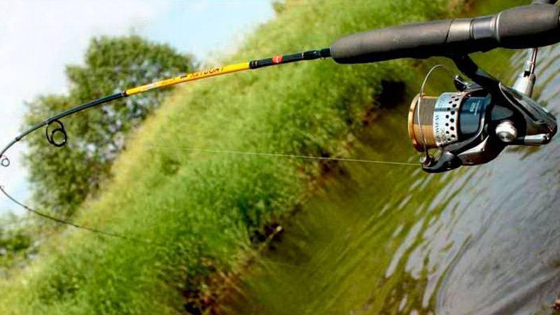 Спиннинг для рыбалки с берега: как правильно рыбачить