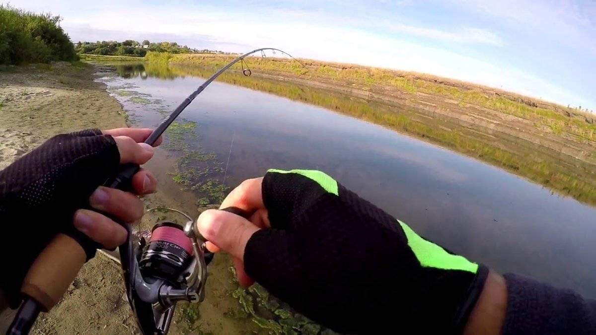 Как ловить жереха на спиннинг