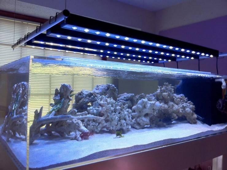 Освещение аквариума своими руками из светодиодной ленты