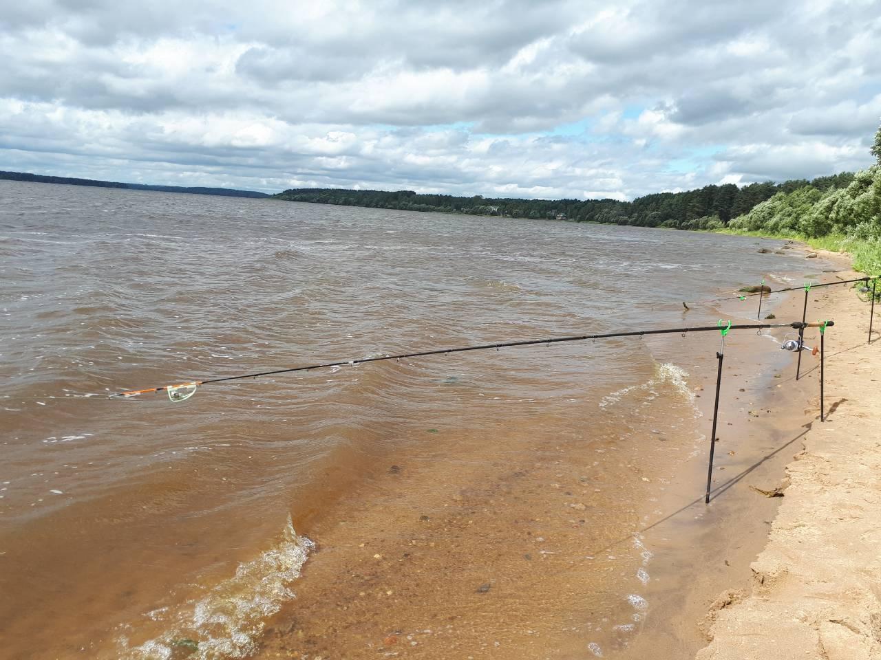 Дубна места для рыбалки