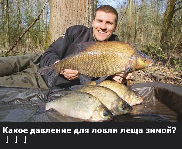 Особенности рыбалки в муроме :: syl.ru