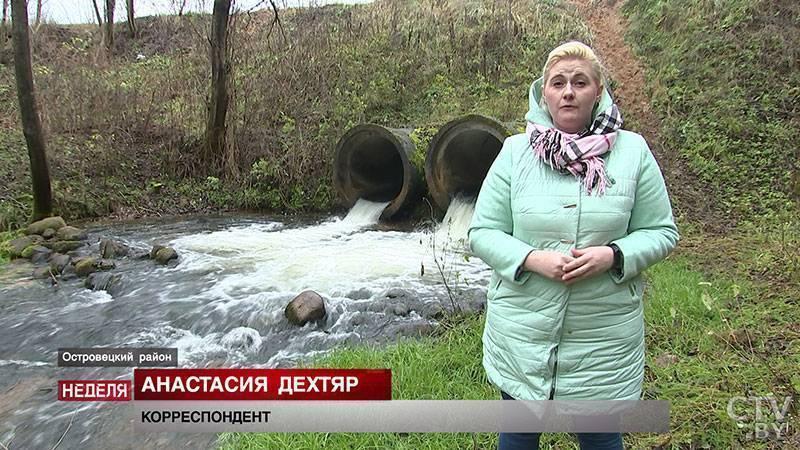 """""""наша форель не отличается от норвежской"""". как растят рыбу, которой не могут накормить белорусов. 21.by"""