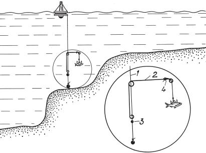 Ловля судака на живца с берега и лодки: способы и техника