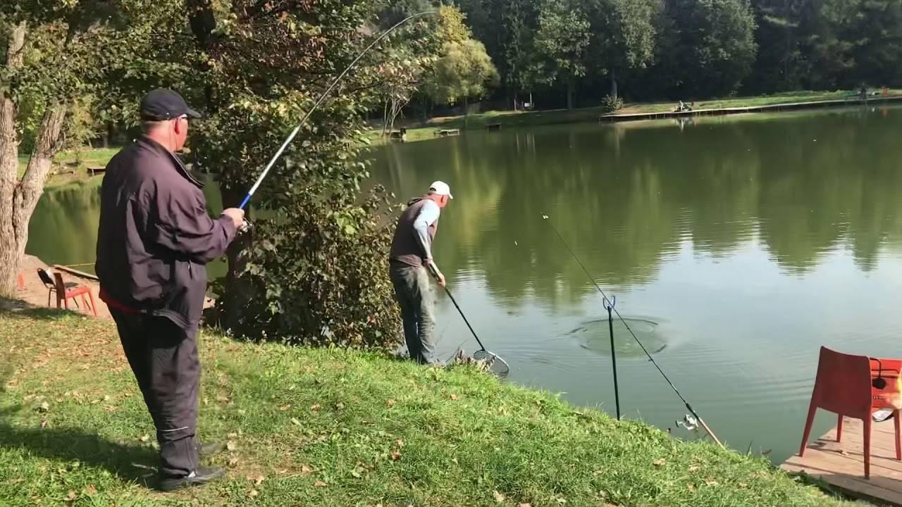 Рыбалка в дмитровском районе - подмосковье, реки, озера, водохранилища и лучшие базы отдыха, отзывы