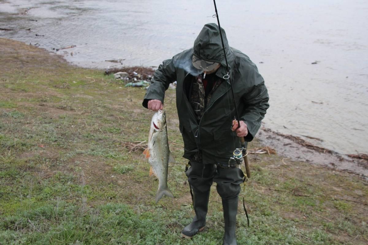 Рыбалка в саратовской области: платная и бесплатная