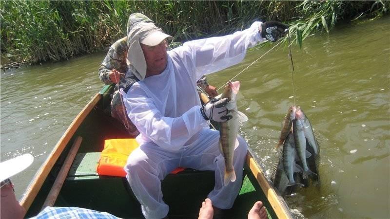 Платная рыбалка на нарских прудах – суперулов – интернет-портал о рыбалке