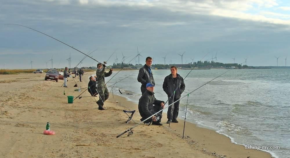 Рыбалка в азовском море: перечень рыболовных туров
