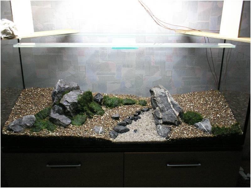 Какой грунт лучше для аквариума: какой выбрать (лучшие производители), виды по размеру (крупный, мелкий), для живых растений