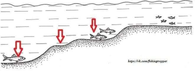Как узнать глубину, рельеф и структуру дна с помощью фидера