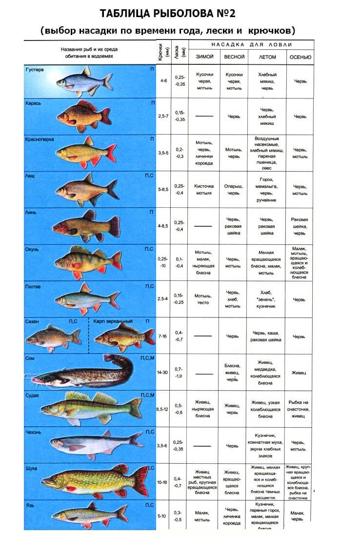 Ограничения рыбной ловли на вазузской гидросистеме