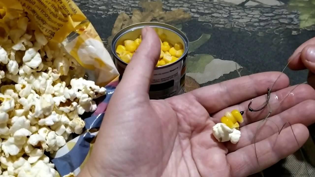 Ловля на кукурузу: карп и карась, голавль и язь