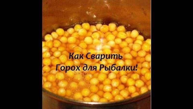 Прикормка из гороха: виды, рецепты и способы применения