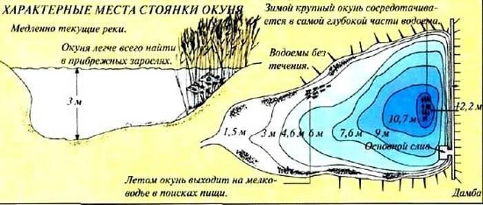 Особенности рыбалки на водохранилище