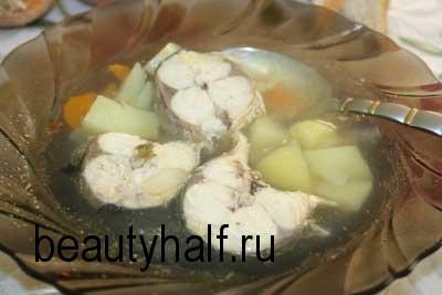 Уха из скумбрии свежемороженой — 7 рецептов, как сварить вкусный рыбный суп