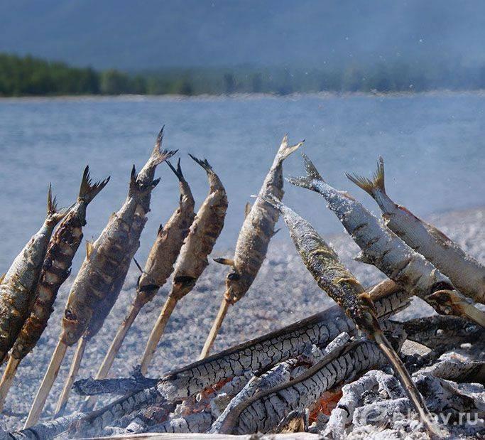 Все о рыбалке в иркутске и иркутской области