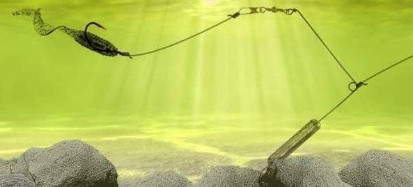 Троллинг. что такое ? троллинг в рыбалке? правила троллинга на реке для начинающих
