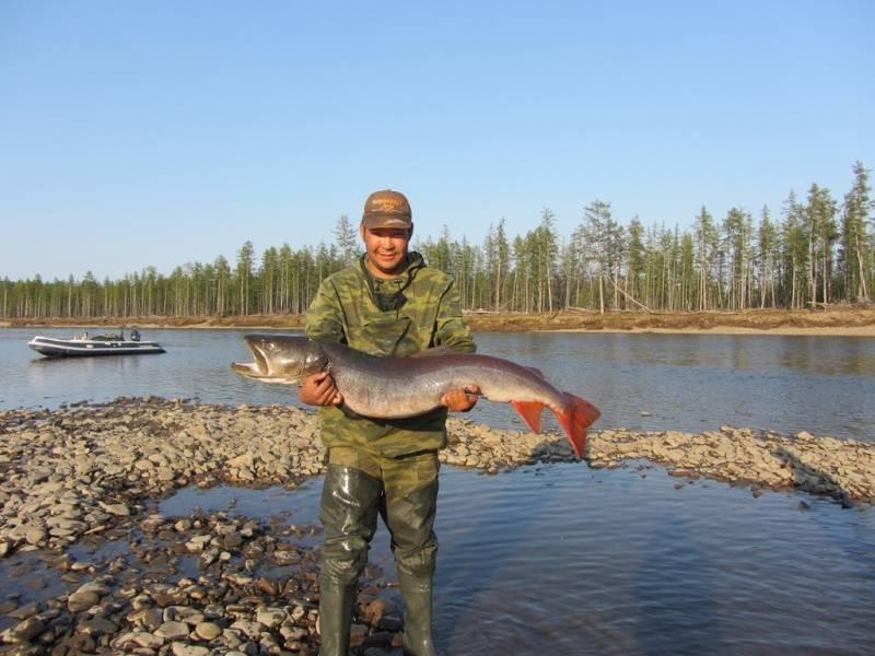 Река бейсуг в краснодарском крае: истоки, карта, рыбалка, фото, описание