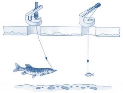 Рыбалка зимой на щуку жерлицами: секреты подледного лова