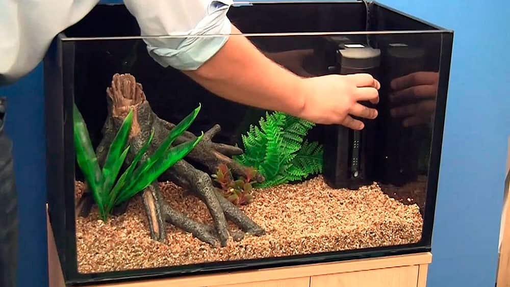 Вода для аквариума в домашних условиях: какая нужна, как подготовить, какая должна быть, аквариумная вода для рыб