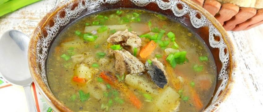 Суп из скумбрии свежемороженой быстро и вкусно рецепт с фото пошагово - 1000.menu