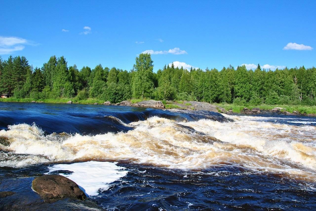 Река шуя, карелия: описание, фото