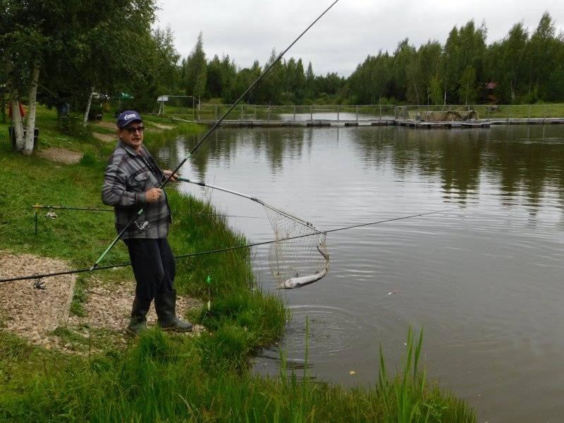 Платная рыбалка в стрелецком ручье деревни коротыгино
