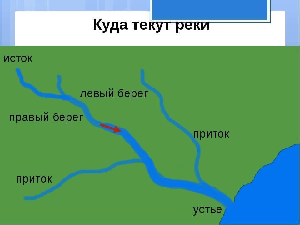 Особенности, описание, интересные факты, исток и устье, притоки, длина, название реки обь. обь на карте россии.