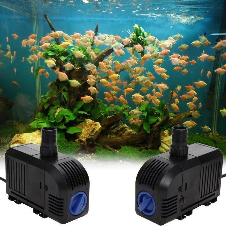 Водяная помпа (насос, фильтр) для аквариума: что такое, для чего нужна, как работает, как выбрать, как сделать своими руками