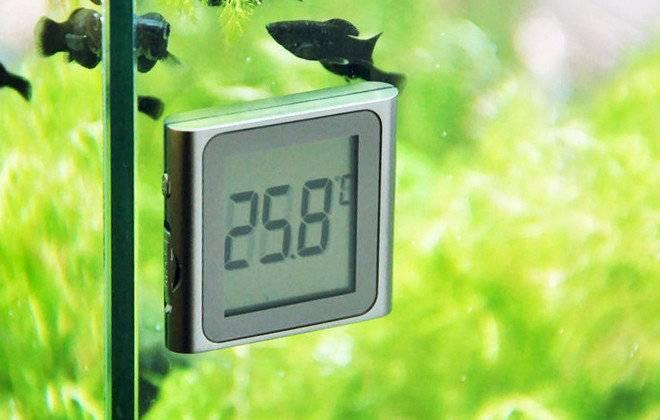 Нагреватель для аквариума и все ,что нужно о нем знать.