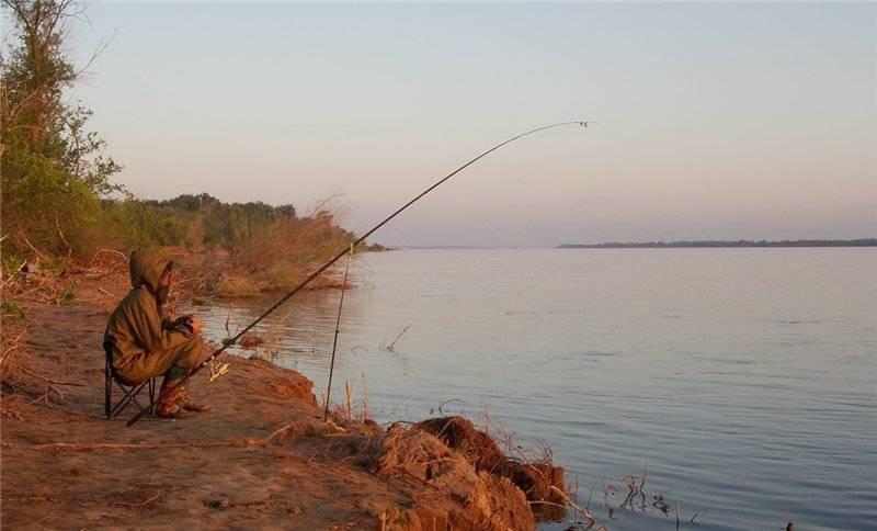 Рыбалка на лене и притоках реки: рыбалка на линя, щуку, зимой, осенью, видео