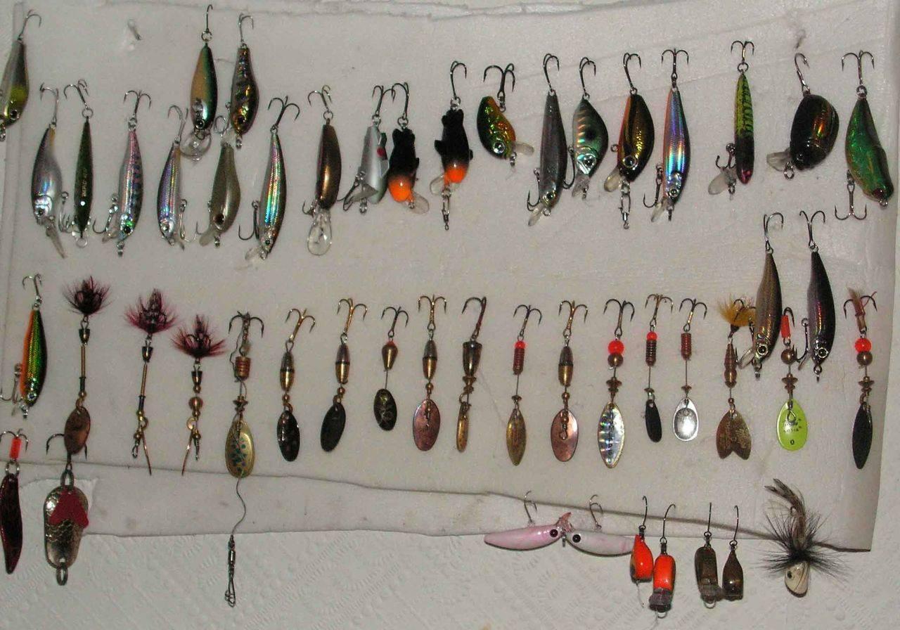 Ловля хищника и мирной рыбы на спиннинг: как поймать плотву, сигу, сазана, уклейку