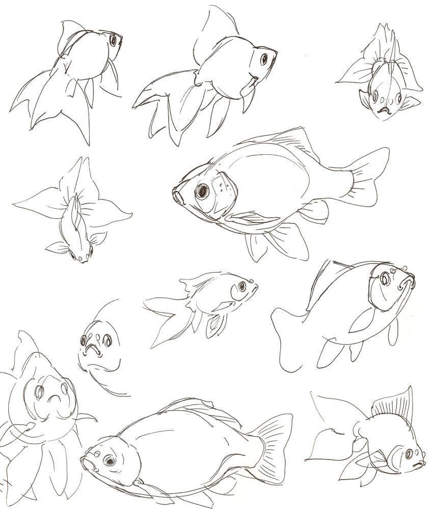 Как нарисовать рыбу: карандашом поэтапно видео
