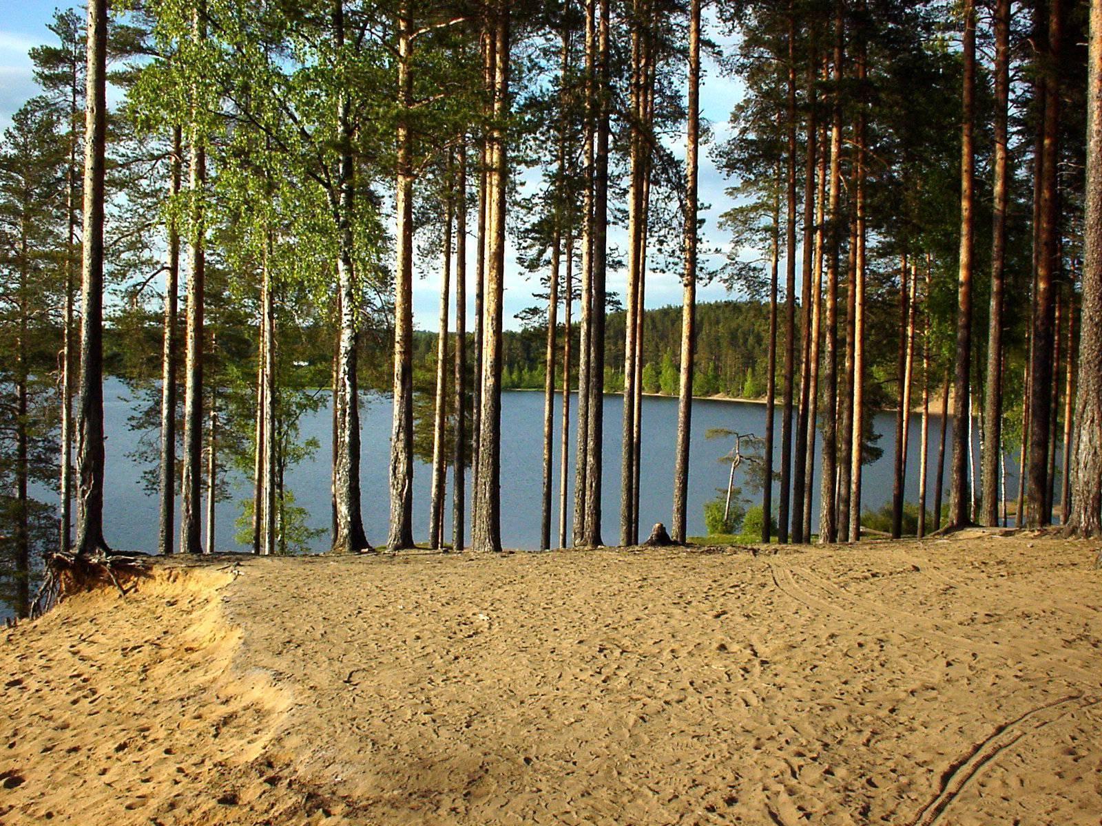 Зеркальное озеро в ленинградской области — рыбалка, базы отдыха, погода, отзывы, как добраться, фото