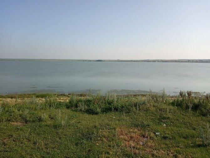 Кояшское озеро, крым — отзывы, польза соли и грязи, маршрут, карта, как добраться на машине, фото, видео – туристер.ру