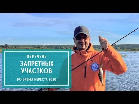 Существуют ли зимовальные ямы?. ловля рыбы со льда