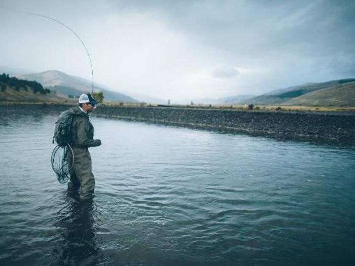 Рыбалка в озерках тверской области: лучшие водоемы
