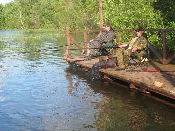 Рыбалка на валдае ловля окуня щуки леща в новгородской области