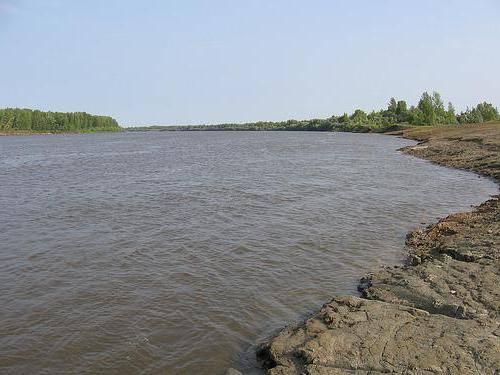 Рыбалка на реке чулым в новосибирской области