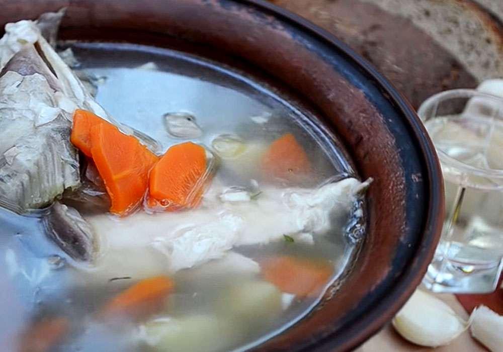 Как варить уху дома из речной рыбы?