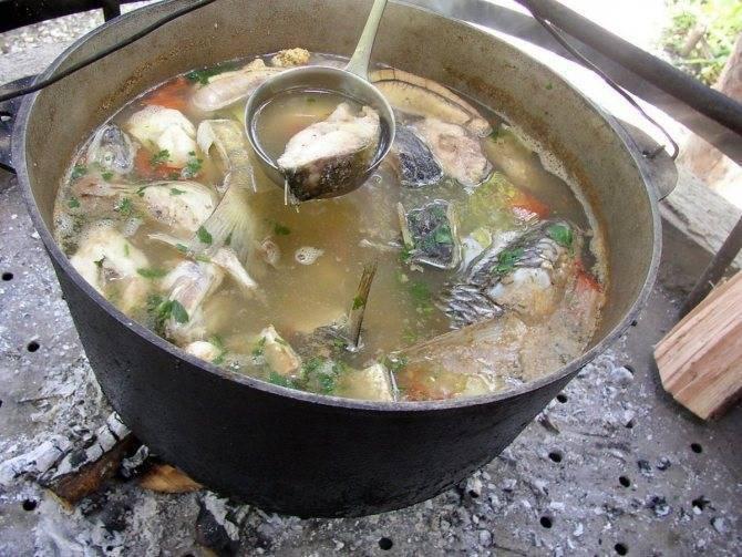 Суп из головы карпа