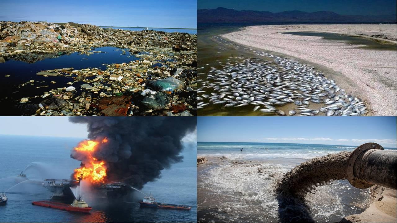 Экология россии: текущая ситуация, основные проблемы и пути решения