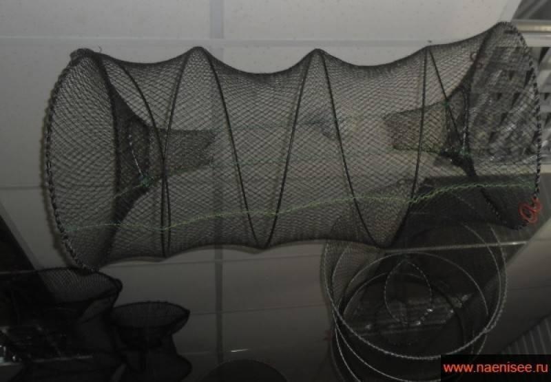 Создание искусственного водоема для разведения рыбы