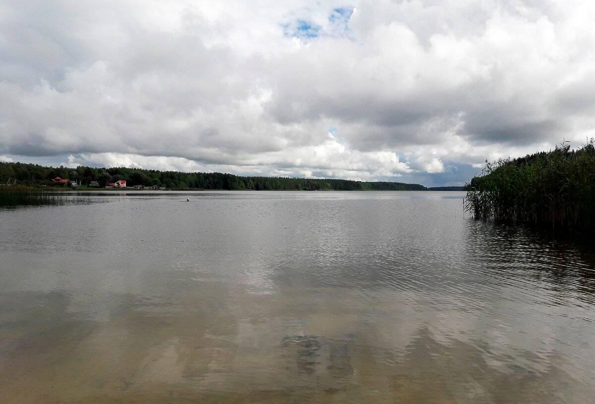 Быстрица (река, впадает в череменецкое озеро)