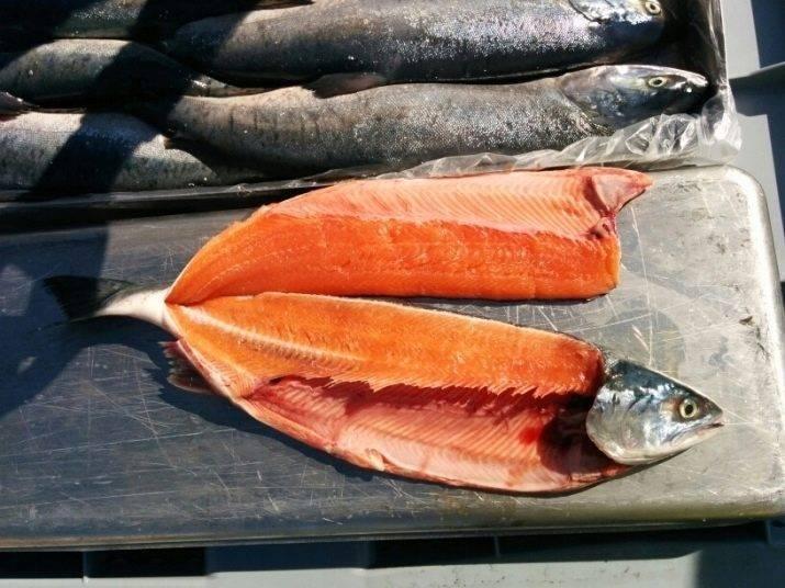 Рыба кижуч: фото и описание, отзывы, рецепты в духовке, как засолить