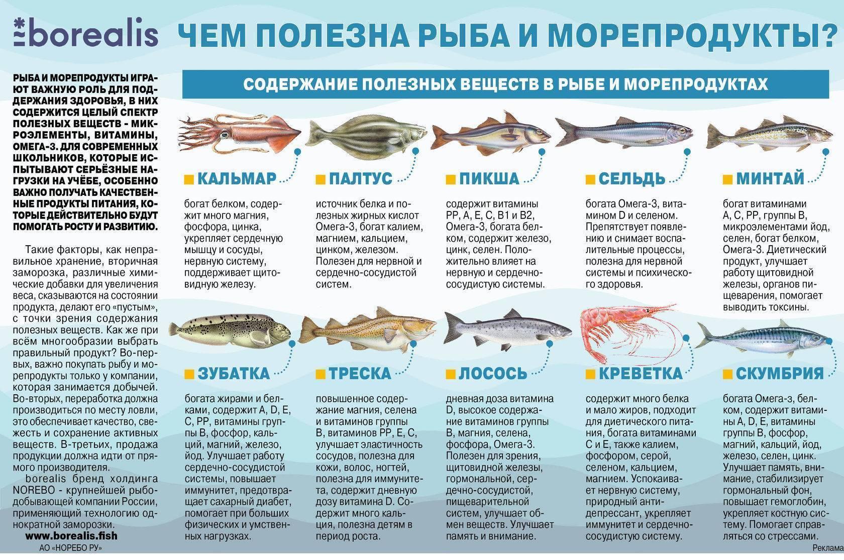 Приготовление рыбы макрурус в духовке. рыба макрурус как приготовить польза и вред