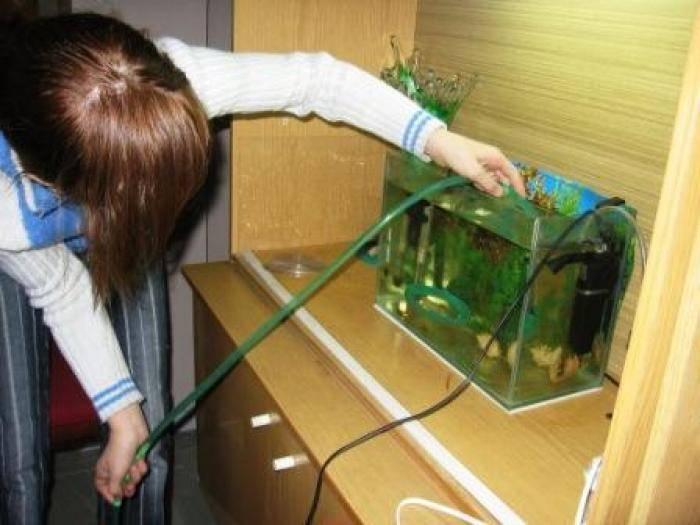 Как отмыть аквариум от известкового налета? только действенные советы!