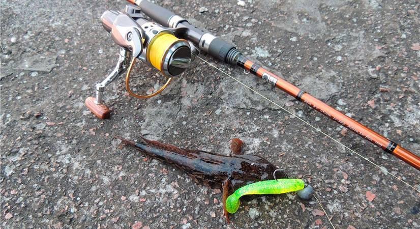 Ловля ротана на спиннинг по открытой воде, поплавок и на кивок / рыбалка зимой со льда