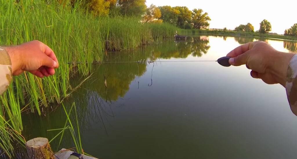 Полезные советы и рекомендации по ловле карпа – рыбалке.нет