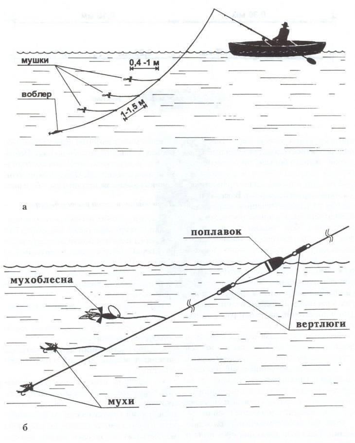 Ловля хариуса поплавочной удочкой: особенности и нюансы